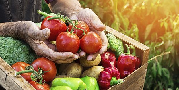 Alimentos de temporada: beneficios
